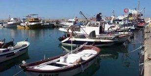 Zonguldaklı balıkçılar yeni sezonda istediğini bulamadı