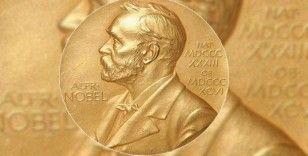 2021 Nobel Tıp Ödülü 'ısı ve temas reseptörlerinin keşfi'ne verildi