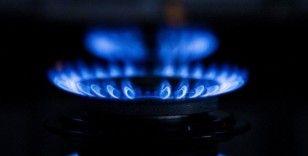 Avrupa'da doğal gaz fiyatları megavatsaat başına 119 avroya çıktı