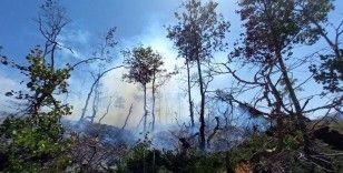 Orman yangınlarına teknolojik tedbir