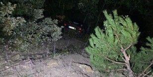Şarampole yuvarlanan aracı ağaç dalları tuttu: 2 yaralı