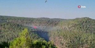 Kudüs'te orman yangını henüz kontrol altına alınamadı