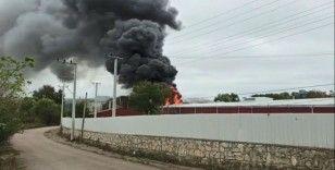 Kocaeli'de yağ fabrikasında yangın