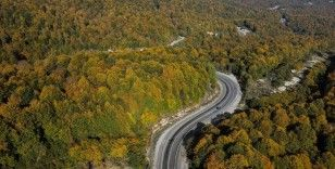 Domaniç Dağları'nda sonbahar renkleri