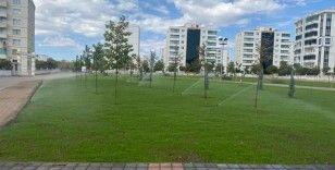 Bağlar Belediyesi, ilk Zazaca mevlidi yazan alimin adını parka verdi